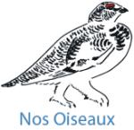 Logo Nos Oiseaux