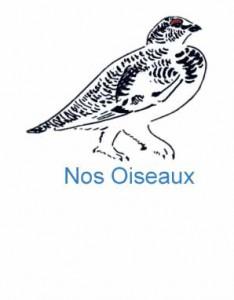 Nos Oiseaux logo
