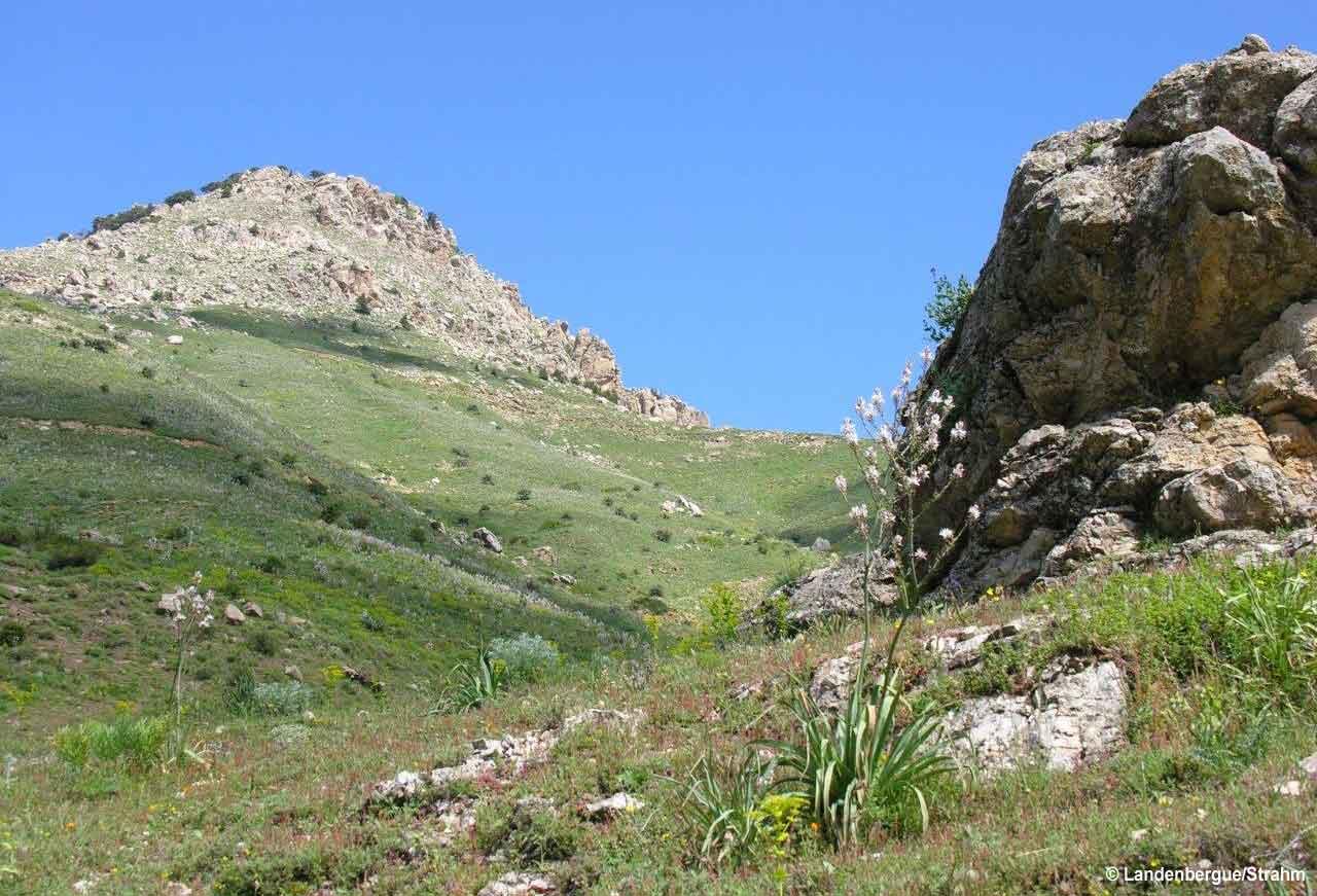 Vue du Parc National du Djurdjura, Algérie