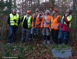 Equipe balbuzard construction des nids
