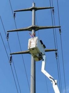 Mission accomplie sur ce pylône de 28m, débarrassé de tous ses pique-oiseaux.