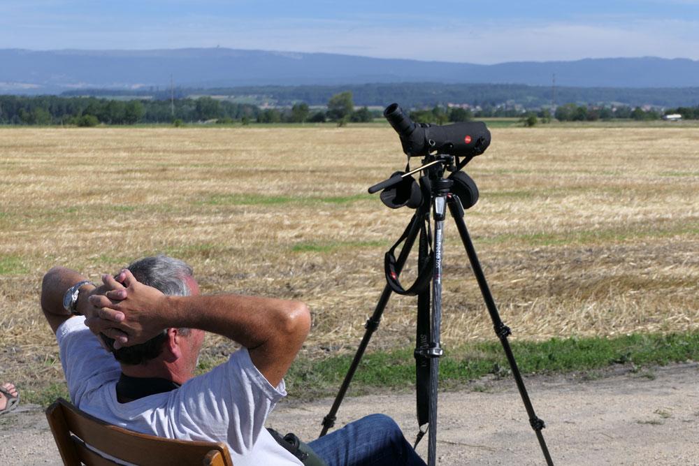 Monitoring Ospreys 2017