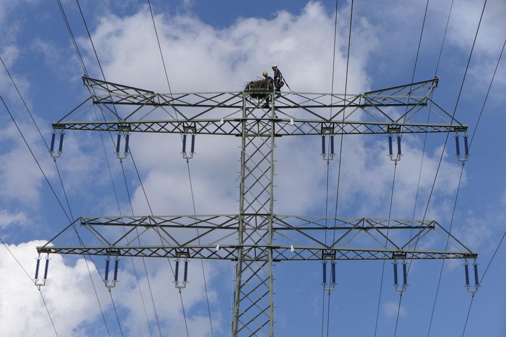Ringing Osprey on a German high-tension pylon
